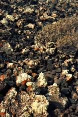 steine-mit-rost-37